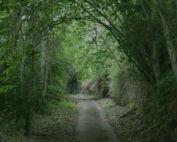 Camino Candelaria